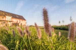 Eyndevelde vakantiewoning Vlaamse Ardennen vakantiehuis in groep