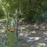 Wegwijzers voor wandelpaden in het Duivenbos in de omgeving van Eyndevelde